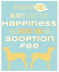 adoption fees for pets