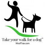 walk your dog and support our shelter