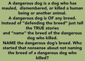 A DANGEROUS DOG IS