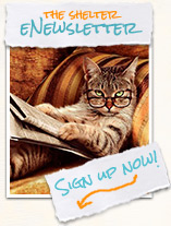 Newsletter Sign Up Sterling Animal Shelter