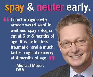 Michael Moyer Spay Neuter